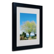 Trademark Fine Art Kathie McCurdy 'Wind In the Willow' Matted Art Black Frame 16x20 Inches