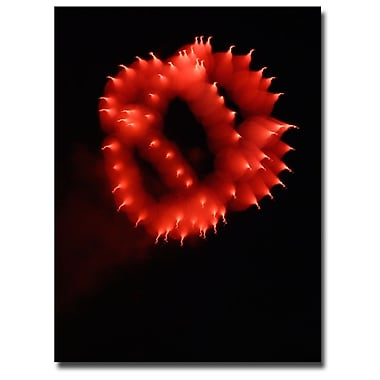 Trademark Fine Art Kurt Shaffer 'Abstract Fireworks III' Canvas Art 18x24 Inches