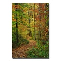 Trademark Fine Art Fall Pathway by Kurt Shaffer-Gallery Wrapped 30x47 Inches