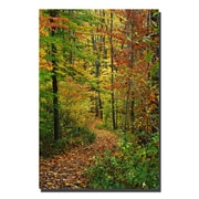 Trademark Fine Art Kurt Shaffer 'Fall Trail' Canvas Art 16x24 Inches