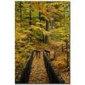 Trademark Fine Art Kurt Shaffer 'Fall Bridge' Canvas Art 14x19 Inches