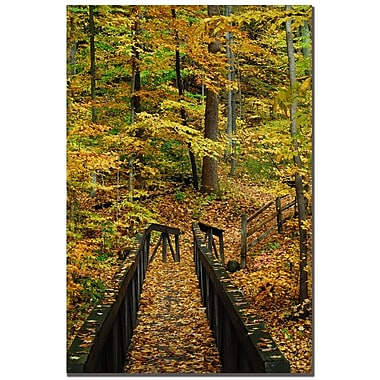 Trademark Fine Art Kurt Shaffer 'Fall Bridge' Canvas Art 16x24 Inches