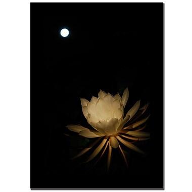 Trademark Fine Art Kurt Shaffer 'Full Moon Power' Canvas Art