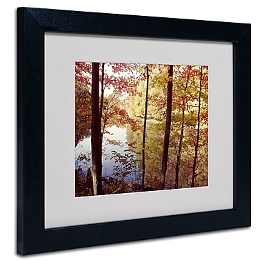 Trademark Fine Art Kurt Shaffer 'A Secret Pond' Matted Art Black Frame 16x20 Inches