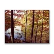Trademark Fine Art Kurt Shaffer 'A Secret Pond' Matted Art Black Frame 11x14 Inches