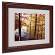 Kurt Shaffer 'A Secret Pond' Framed Matted Art - 16x20 Inches - Wood Frame