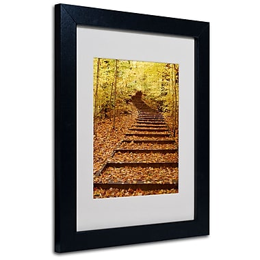 Trademark Fine Art Kurt Shaffer 'Fall Stairway' Matted Art Black Frame 16x20 Inches