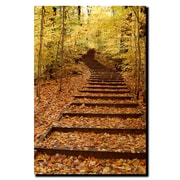 Trademark Fine Art Fall Stairway by Kurt Shaffer-Gallery Wrapped Canvas 14x19 Inches