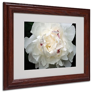 Kurt Shaffer 'Perfect Peony' Framed Matted Art - 11x14 Inches - Wood Frame