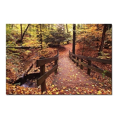 Trademark Fine Art Autumn Bridge by Kurt Shaffer-Gallery Wrapped 16x24 Inches