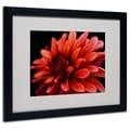 Kurt Shaffer 'Red Dahlia' Matted Framed Art - 11x14 Inches - Wood Frame