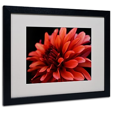 Kurt Shaffer 'Red Dahlia' Matted Framed Art - 11x14 Inches - Wood Frame