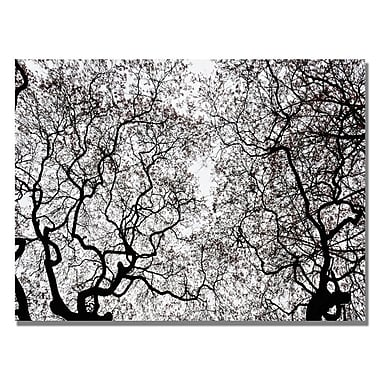 Trademark Fine Art Kurt Shaffer 'Japanese Maple Spring Abstract' Canvas Art 30x47 Inches