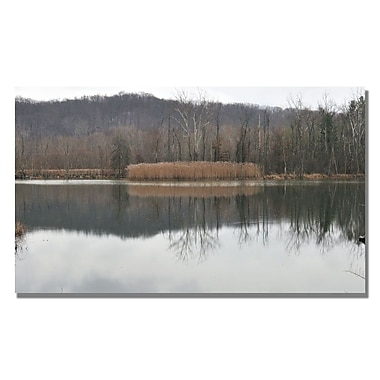 Trademark Fine Art Kurt Shaffer 'Quiet Winter Day' Canvas Art 14x24 Inches