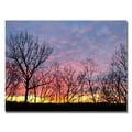 Trademark Fine Art 'Winter Sunset' 30in. x 47in. Canvas Art