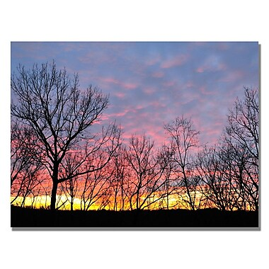 Trademark Fine Art Kurt Shaffer 'Winter Sunset' Canvas Art 22x32 Inches