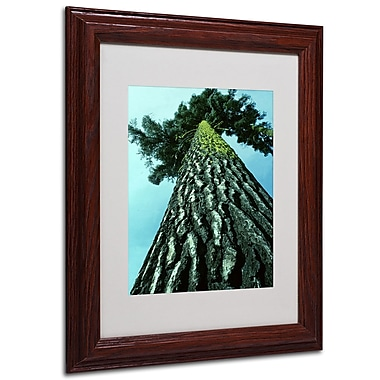 Kurt Shaffer 'A Tree of Life' Framed Matted Art - 16x20 Inches - Wood Frame