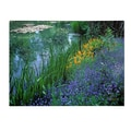 Trademark Fine Art Kathy Yates 'Monet's Lily Pond' Canvas Art 14x19 Inches