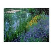 Trademark Fine Art Kathy Yates 'Monet's Lily Pond' Canvas Art 16x24 Inches