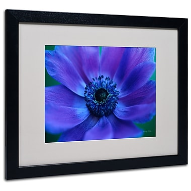 Kathy Yates 'Beautiful Anemone' Matted Framed Art - 11x14 Inches - Wood Frame