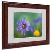 Kathy Yates 'Blue Eyed Grass' Matted Framed Art - 16x20 Inches - Wood Frame