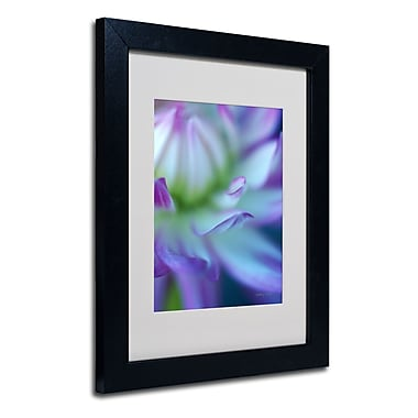 Trademark Fine Art Kathy Yates 'The Color Purple' Matted Art Black Frame 16x20 Inches