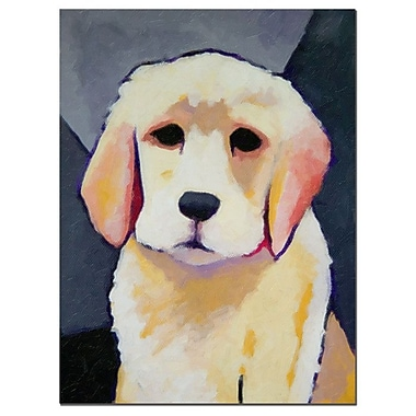 Trademark Fine Art Adam Kadmos 'Puppy Dog' Canvas Art 35x47 Inches