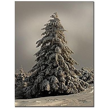 Trademark Fine Art Lois Bryan 'Standing Tall' Canvas Art