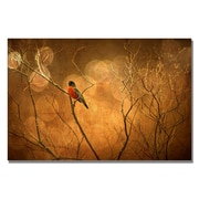 Trademark Fine Art Lois Bryan 'Robin in Shades of Orange' Canvas Art 22x32 Inches