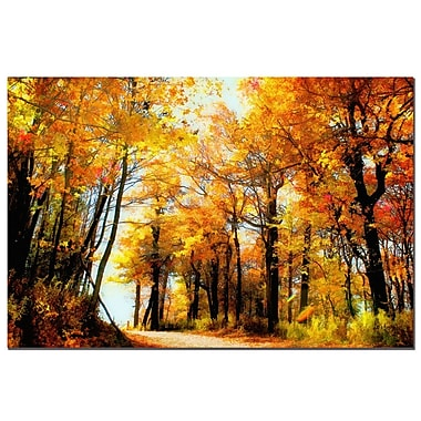 Trademark Fine Art Fall Scene by Lois Bryan-Canvas Ready to Hang 16x24 Inches
