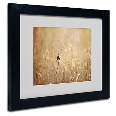 Trademark Fine Art Lois Bryan 'Joyful Joyful All Rejoicing' Matted Art Black Frame 16x20 Inches