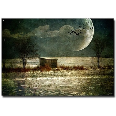 Trademark Fine Art Lois Bryan 'Moonstruck' Canvas Art