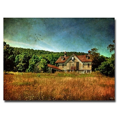 Trademark Fine Art Lois Bryan 'Old Barn in Golden Light' Canvas Art 30x47 Inches