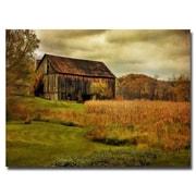 Trademark Fine Art Lois Bryan 'Old Barn on Rainy Day' Canvas Art