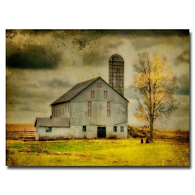 Trademark Fine Art Lois Bryan 'Old Barn on Stormy Afternoon' Canvas Art 16x24 Inches