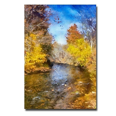 Trademark Fine Art Lois Bryan 'Stream in Autumn' Canvas Art 22x32 Inches