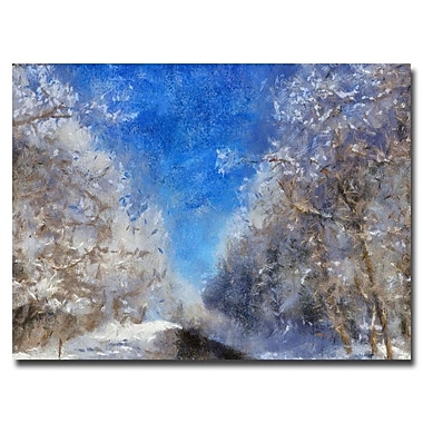 Trademark Fine Art Lois Bryan 'Icy Road' Canvas Art 16x24 Inches