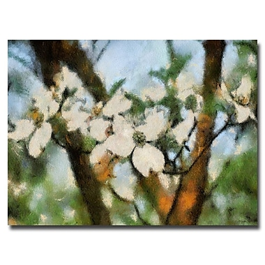 Trademark Fine Art Lois Bryan 'Dogwood Tree' Canvas Art 30x47 Inches