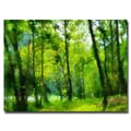 Trademark Fine Art Lois Bryan 'Forest Walk in Spring' Canvas Art 22x32 Inches
