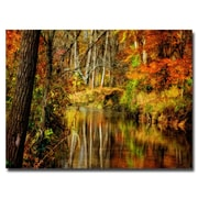 Trademark Fine Art Lois Bryan 'Bob's Creek' Canvas Art 30x47 Inches
