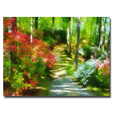 Trademark Fine Art Lois Bryan 'Azaleas in the Morning' Canvas Art 30x47 Inches