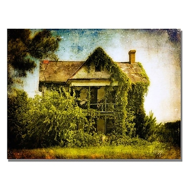 Trademark Fine Art Lois Bryan 'Ivy House' Canvas Art 18x24 Inches