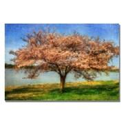 Trademark Fine Art Lois Bryan 'Cherry Tree' Canvas Art 16x24 Inches