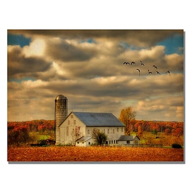 Trademark Fine Art Lois Bryan 'Family Farm II' Canvas Art 30x47 Inches, LBr0162-C3047GG