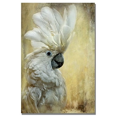 Trademark Fine Art Lois Bryan 'Cocktoo' Canvas Art
