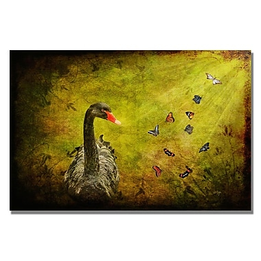 Trademark Fine Art Lois Bryan 'Goose and Butterflies' Canvas Art 35x47 Inches