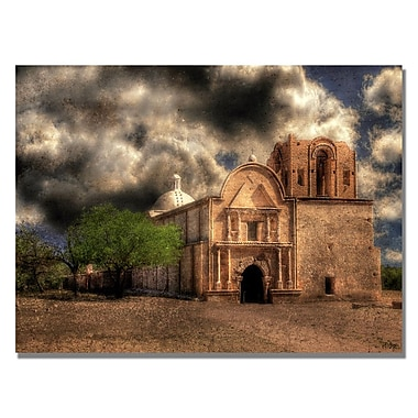 Trademark Fine Art Lois Bryan 'Cathedral' Canvas Art 30x47 Inches