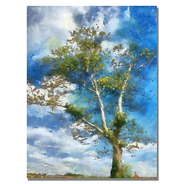 Trademark Fine Art Lois Bryan 'The Tree Stands Alone' Canvas Art 18x24 Inches