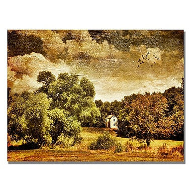 Trademark Fine Art Lois Bryan 'Old Farm House' Canvas Art 30x47 Inches