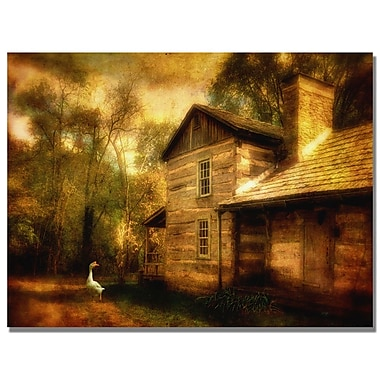 Trademark Fine Art Lois Bryan 'Family Farm III' Canvas Art